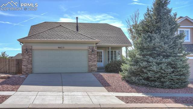 4623 Saddle Ridge Drive, Colorado Springs, CO 80922 (#5334759) :: Action Team Realty