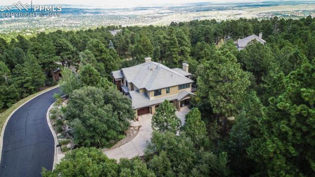 571 Silver Oak Grove, Colorado Springs, CO 80906 (#5335163) :: Tommy Daly Home Team