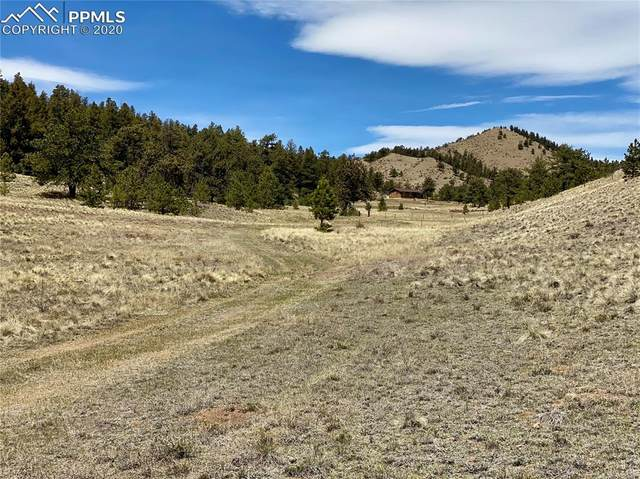 TBD Tarryall Street, Hartsel, CO 80449 (#5339159) :: The Kibler Group