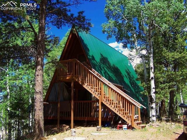 954 Timber Ridge Road, Divide, CO 80814 (#5341773) :: CC Signature Group