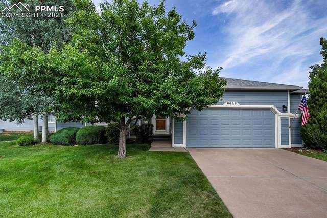 6648 Showhorse Court, Colorado Springs, CO 80922 (#5345643) :: Fisk Team, eXp Realty