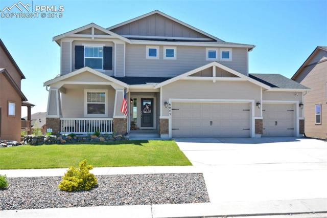 6043 Wolf Village Drive, Colorado Springs, CO 80924 (#5346117) :: Action Team Realty