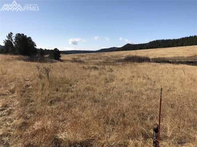 466 Spring Valley Drive, Florissant, CO 80816 (#5347420) :: 8z Real Estate