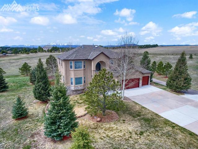 815 Newgate Court, Monument, CO 80132 (#5348019) :: The Dunfee Group - Keller Williams Partners Realty