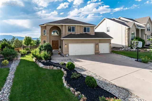 12724 Rockbridge Circle, Colorado Springs, CO 80921 (#5349641) :: 8z Real Estate