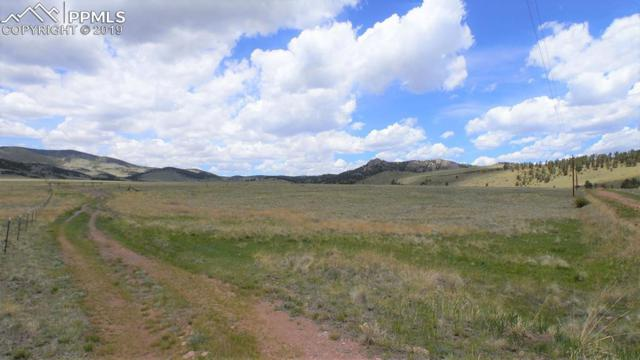95 Wrights Lane, Guffey, CO 80820 (#5349878) :: CC Signature Group