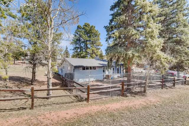 404 N Boundary Street, Woodland Park, CO 80863 (#5350871) :: Finch & Gable Real Estate Co.