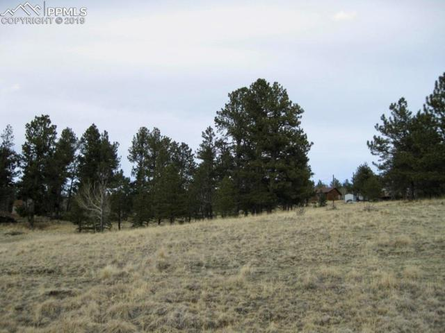 109 Cameron Circle, Florissant, CO 80816 (#5357515) :: Tommy Daly Home Team