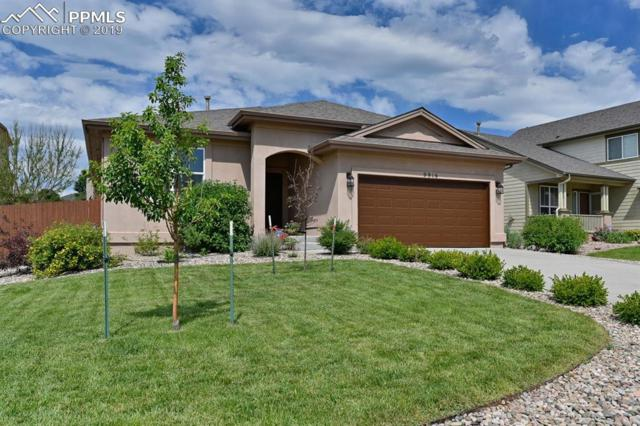 9916 Everglades Drive, Peyton, CO 80831 (#5358802) :: Action Team Realty