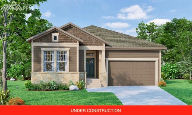 6261 Rowdy Drive, Colorado Springs, CO 80924 (#5360498) :: The Hunstiger Team