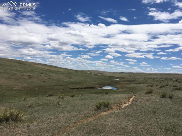 Lot 2 County 90 Road, Simla, CO 80835 (#5363458) :: Action Team Realty