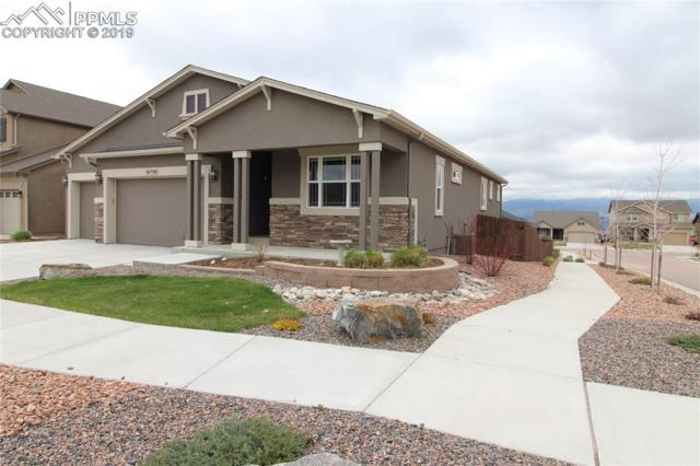 10790 Forest Creek Drive, Colorado Springs, CO 80908 (#5365624) :: CC Signature Group
