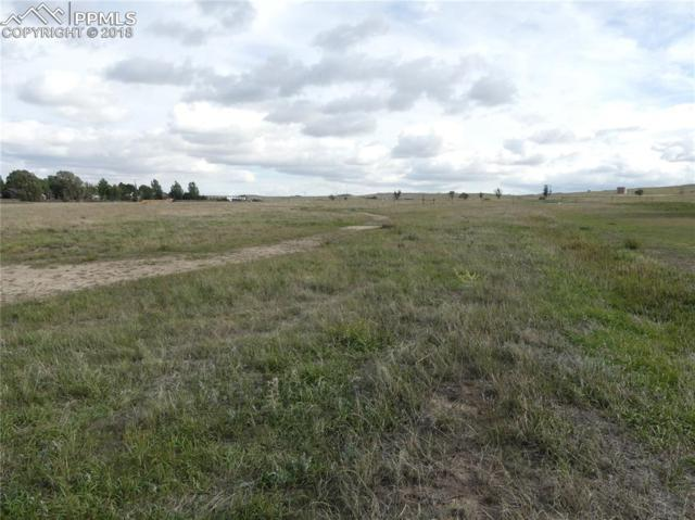 028 Crystola Street, Calhan, CO 80808 (#5369040) :: 8z Real Estate