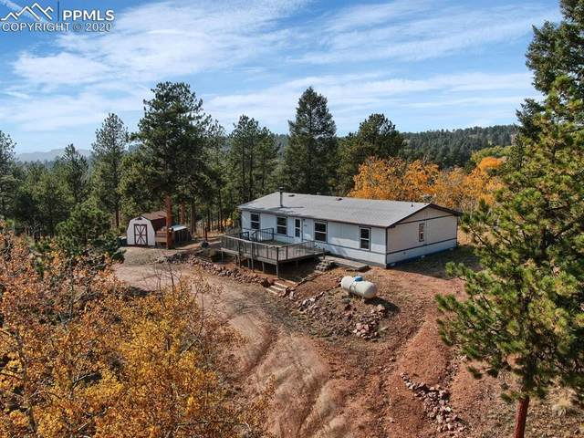 3292 Pikes Peak Drive, Florissant, CO 80816 (#5370363) :: Action Team Realty