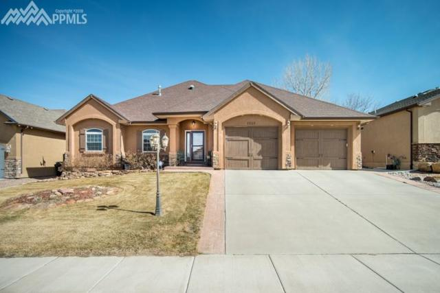 1510 Lynn Meadows Drive, Pueblo, CO 81005 (#5370627) :: 8z Real Estate