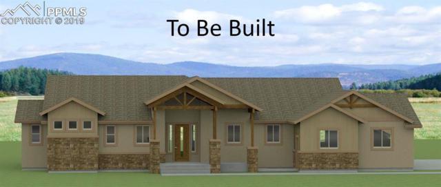 18385 Prairie Coach View, Calhan, CO 80808 (#5372970) :: Harling Real Estate