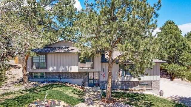 160 Arequa Ridge Drive, Colorado Springs, CO 80919 (#5373912) :: Action Team Realty