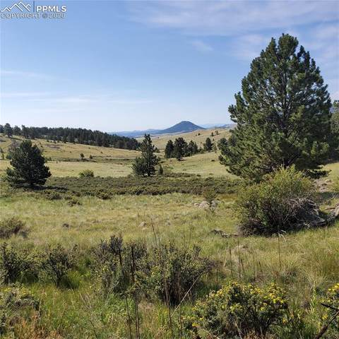 362 Mcintyre Drive, Florissant, CO 80816 (#5375167) :: Action Team Realty
