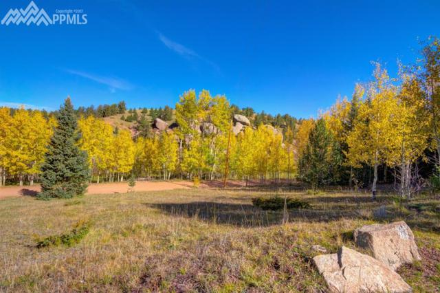 2146 Anges Drive, Cripple Creek, CO 80813 (#5375622) :: 8z Real Estate