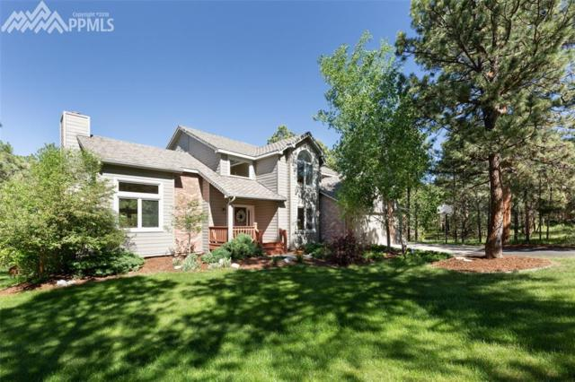 19458 Rim Of The World Drive, Monument, CO 80132 (#5376721) :: The Peak Properties Group