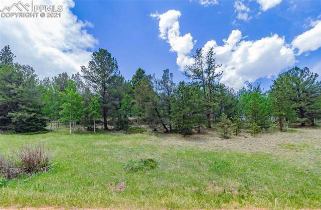 185 Willow Road, Divide, CO 80814 (#5376872) :: Action Team Realty