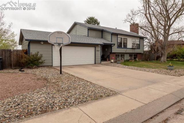 2607 Zephyr Drive, Colorado Springs, CO 80920 (#5377653) :: Fisk Team, RE/MAX Properties, Inc.