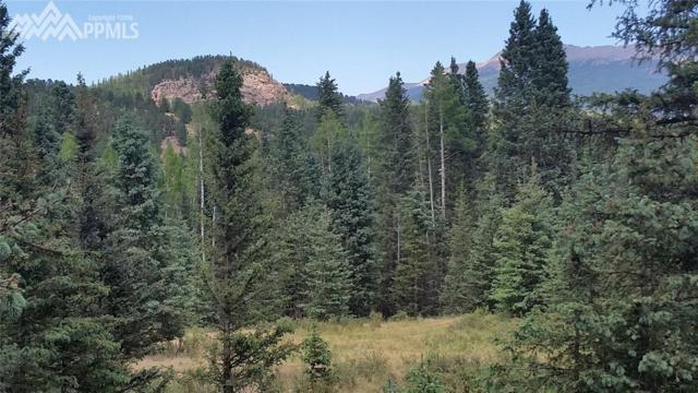 10757 S Highway 67 Highway, Cripple Creek, CO 80813 (#5380427) :: The Peak Properties Group