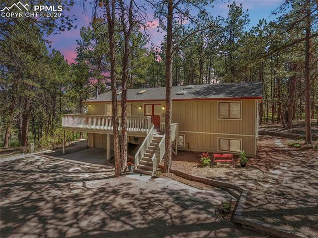 80 Saddlehorn Trail, Monument, CO 80132 (#5380639) :: Tommy Daly Home Team