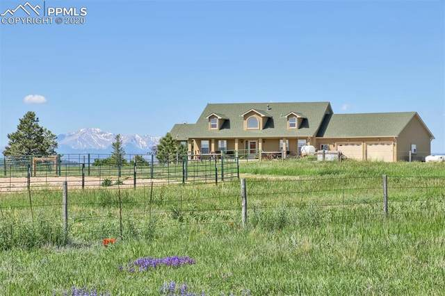 9429 S East Cherry Creek Road, Franktown, CO 80116 (#5381851) :: Tommy Daly Home Team