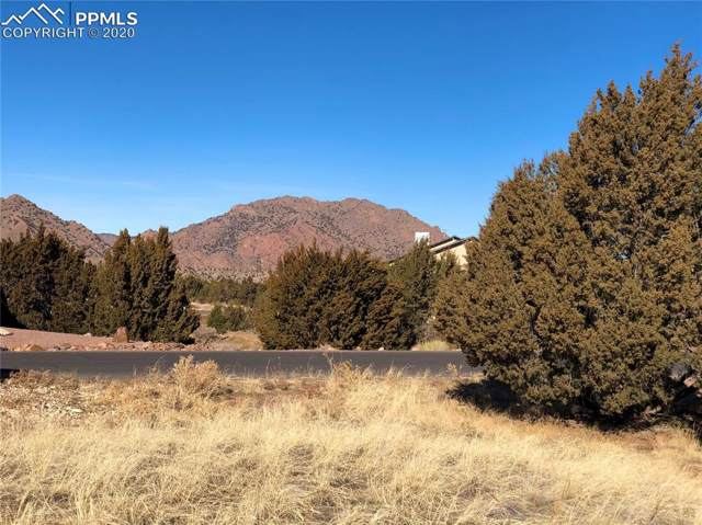 204 Savage Loop, Canon City, CO 81212 (#5383899) :: The Daniels Team