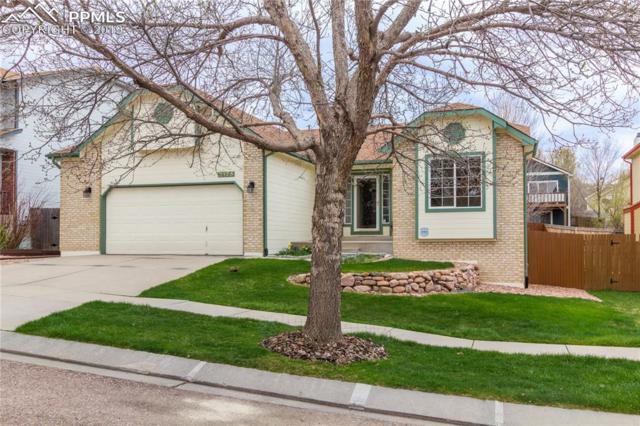 2175 Silkwood Drive, Colorado Springs, CO 80920 (#5384143) :: CC Signature Group
