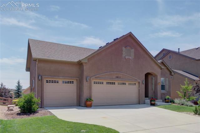 5853 Revelstoke Drive, Colorado Springs, CO 80924 (#5385179) :: Fisk Team, RE/MAX Properties, Inc.