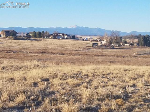 466 S La Porte Drive, Pueblo West, CO 81007 (#5386050) :: Harling Real Estate