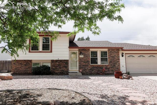 2224 Vintage Drive, Colorado Springs, CO 80920 (#5387511) :: The Dixon Group