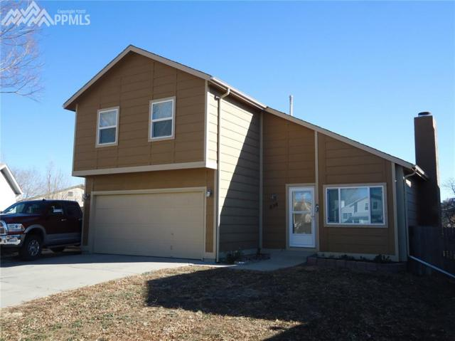 658 Autumn Place, Fountain, CO 80817 (#5389945) :: Action Team Realty