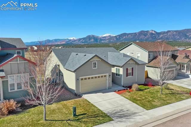 14631 Air Garden Lane, Colorado Springs, CO 80921 (#5392403) :: The Kibler Group
