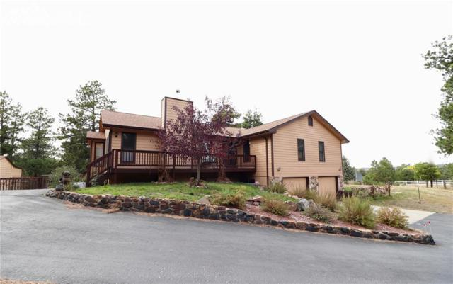 6175 Burgess Road, Colorado Springs, CO 80908 (#5393608) :: Action Team Realty