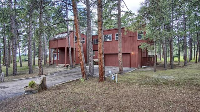 19270 Rim Of The World Drive, Monument, CO 80132 (#5397509) :: Action Team Realty