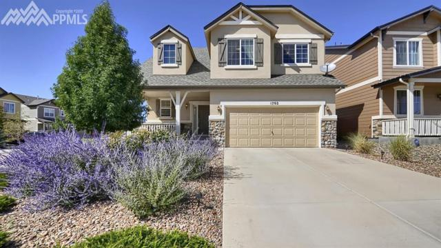 1702 Silver Meadow Circle, Colorado Springs, CO 80951 (#5400797) :: 8z Real Estate