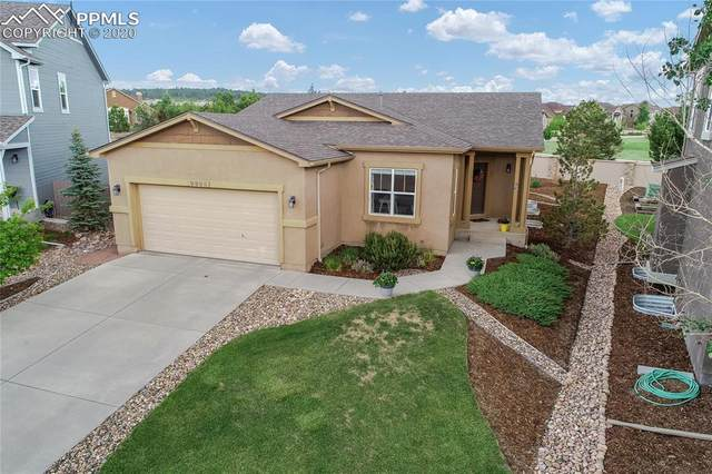 9955 Paonia Park Place, Colorado Springs, CO 80924 (#5401477) :: The Daniels Team