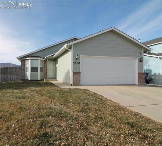 4570 Lincoln Plaza Drive, Colorado Springs, CO 80911 (#5403069) :: Action Team Realty