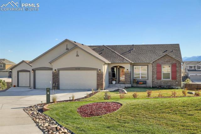 16760 Buffalo Valley Path, Monument, CO 80132 (#5412302) :: The Hunstiger Team