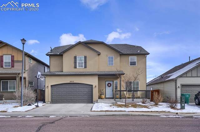 2055 Reed Grass Way, Colorado Springs, CO 80915 (#5417062) :: Jason Daniels & Associates at RE/MAX Millennium