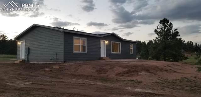 493 Calle De La Nieva, Florissant, CO 80816 (#5417317) :: Colorado Home Finder Realty