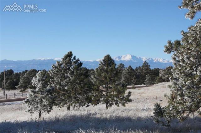 10553 Armonia Ranch Court, Colorado Springs, CO 80908 (#5420375) :: 8z Real Estate