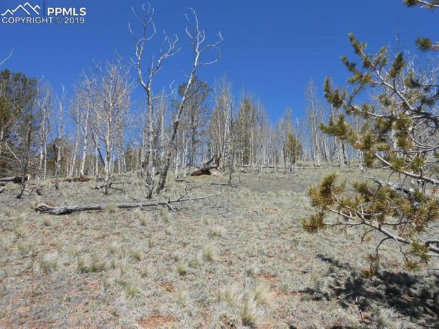 1275 Golden Cycle Circle, Cripple Creek, CO 80813 (#5423019) :: The Treasure Davis Team