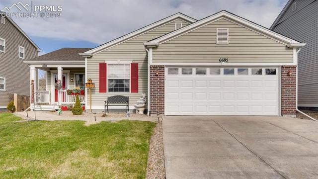 6695 Balance Circle, Colorado Springs, CO 80923 (#5429326) :: Compass Colorado Realty