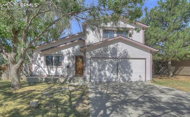 1370 Shadberry Court, Colorado Springs, CO 80915 (#5430006) :: Tommy Daly Home Team