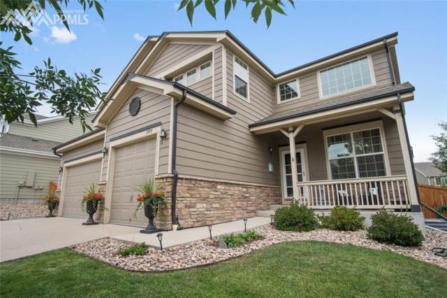 1385 Baguette Drive, Castle Rock, CO 80108 (#5434315) :: 8z Real Estate