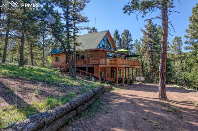 63 Sentinel Way, Florissant, CO 80816 (#5435454) :: The Peak Properties Group